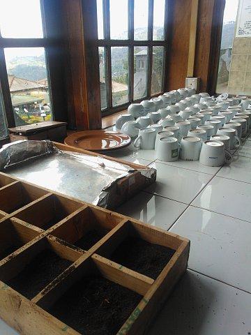 Dambatenne, tea factory