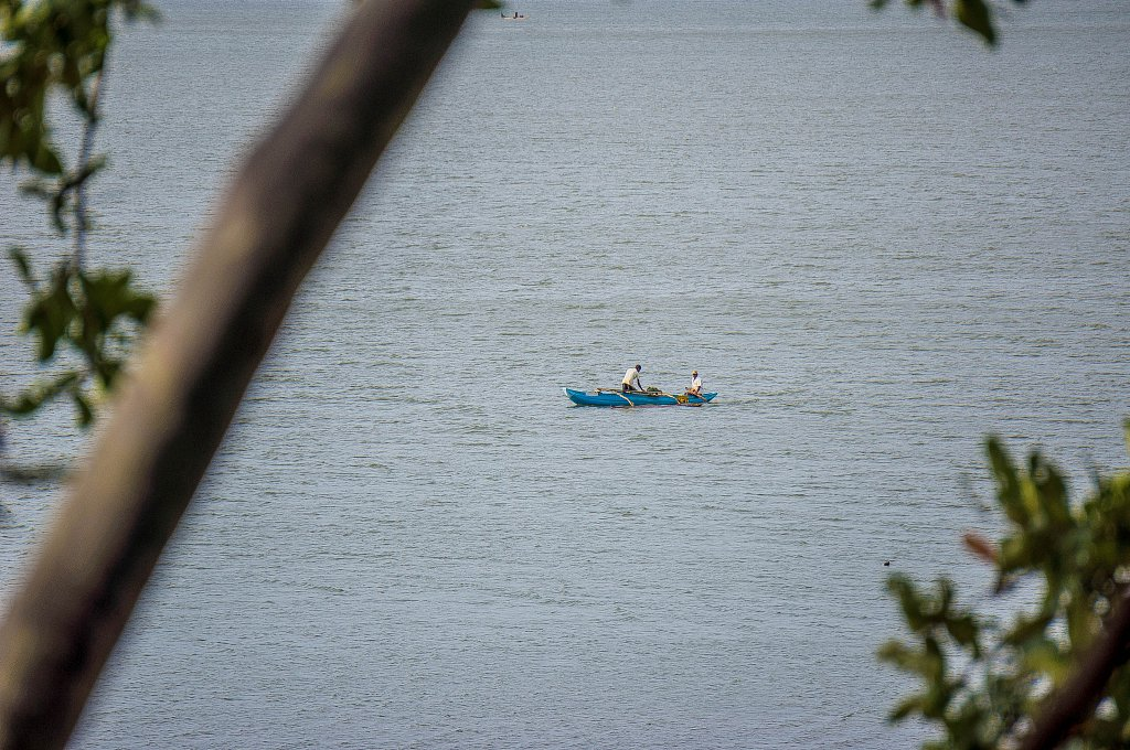 Minneriya national park -  boat