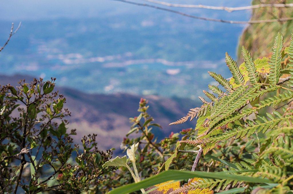 Horton Plains - World's End view
