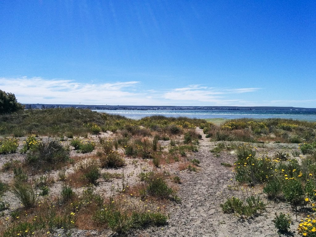 Puerto Madryn Atlantic shore
