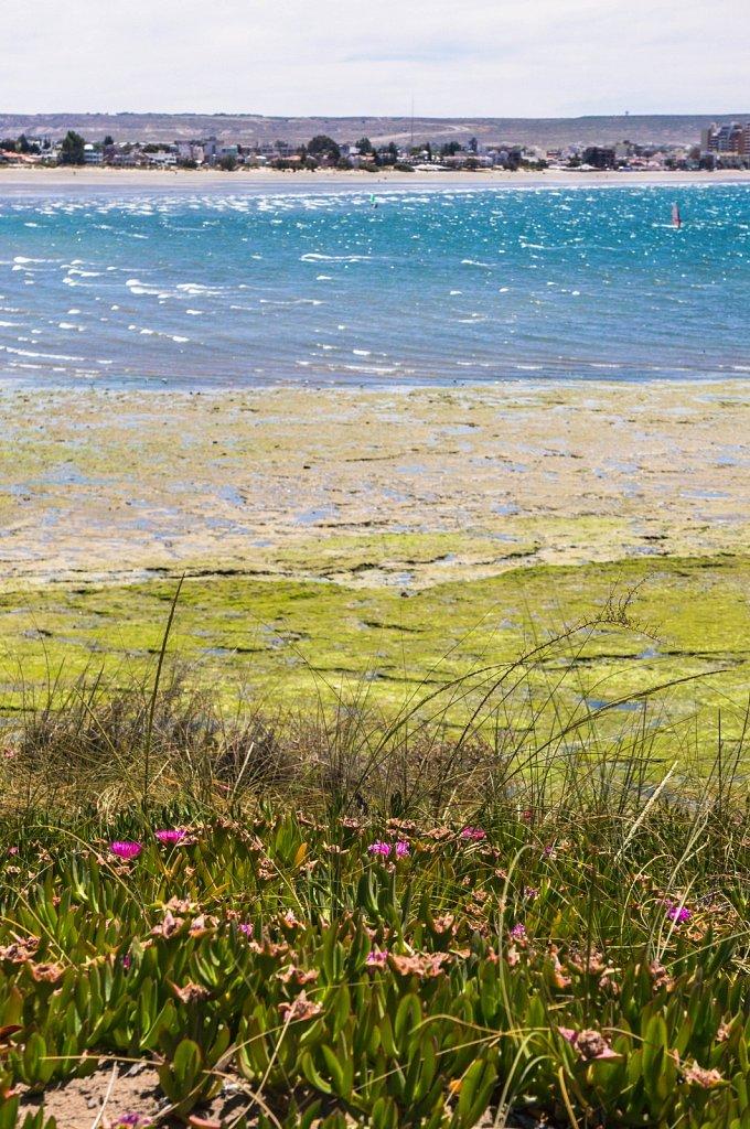 Puerto Madryn Atlantic shore