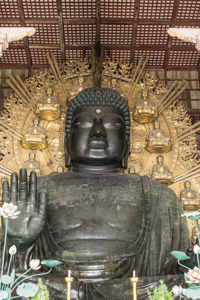 Daibutsu Nara